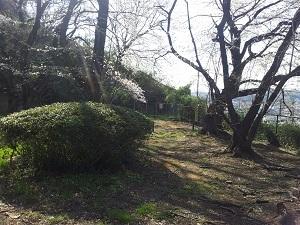 丘への入口.jpg