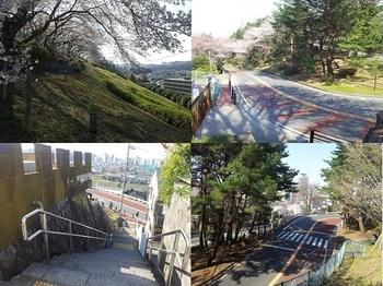 成績桜ケ丘.jpg